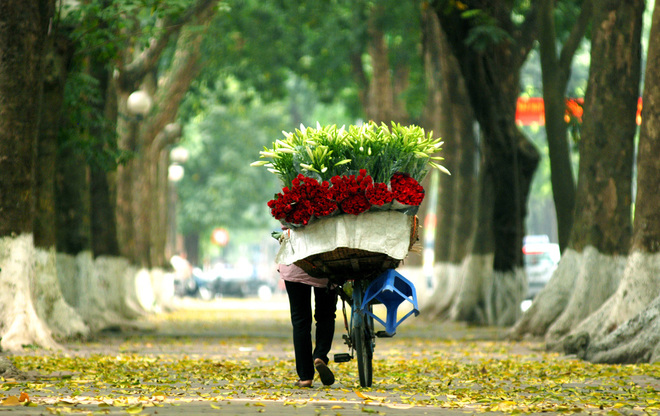 romantic-street-in-hanoi-8