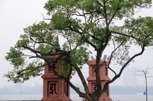 Thien Nien Pagoda-3