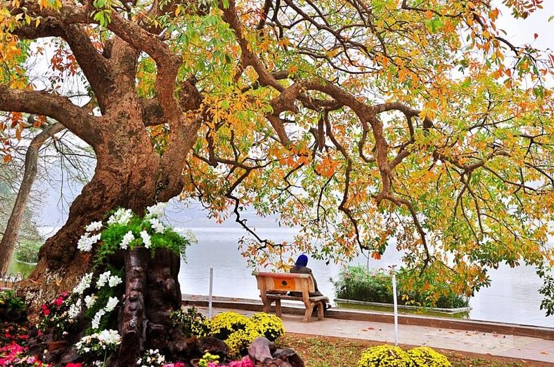 Autumn Hanoi