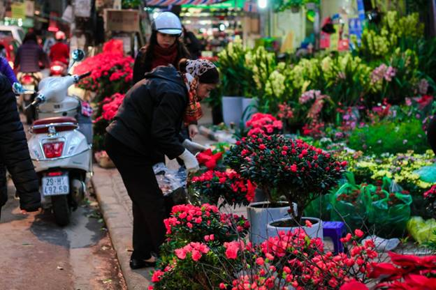 Hoang Hoa Tham - one of the most beautiful street of Hanoi